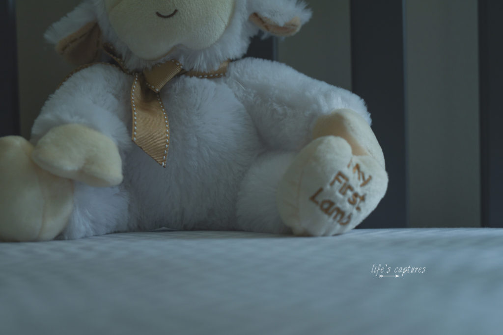 D75_0004.blog